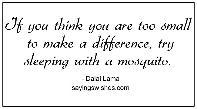 If you think you are too small to make a difference try sleeping with a mosquito Dalai Lama Quote